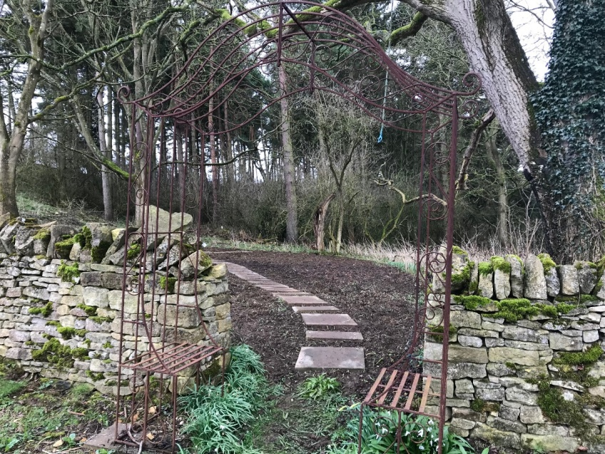 Woodland Clearing & Path -