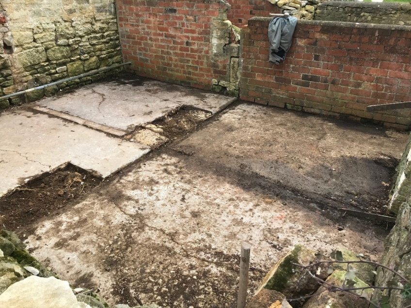 Wall Removal for Greenhouse -