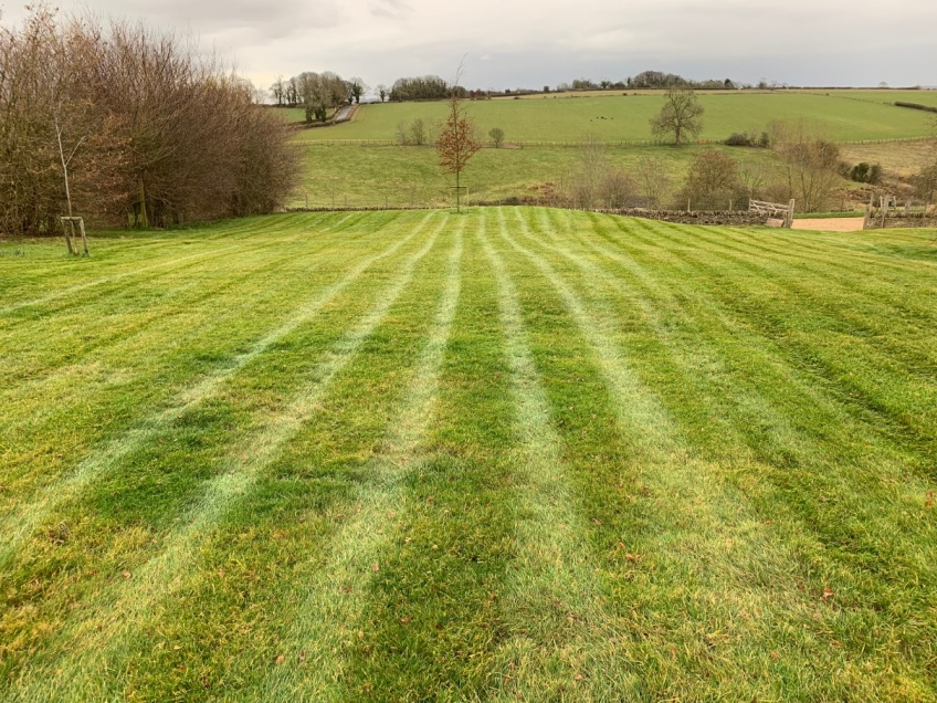 Lawn Mowing - All Sizes -