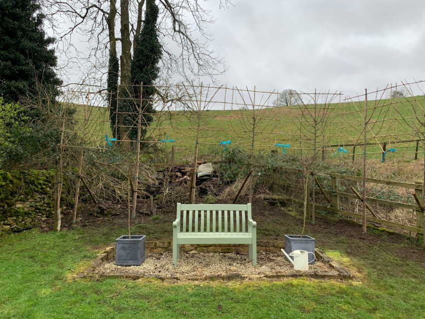 Planting Pleached Beech Trees - Snowshill -