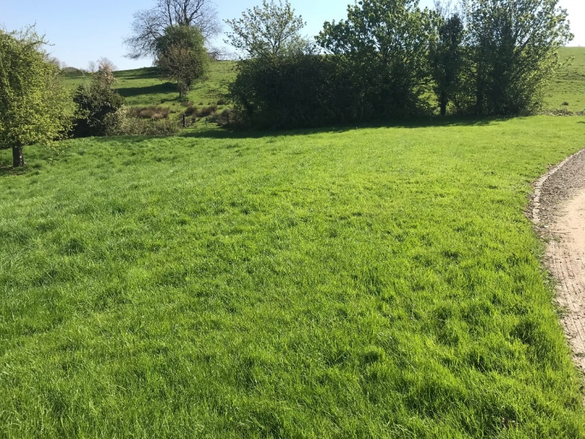 Lawn Cutting - Bourton-on-the-Hill -